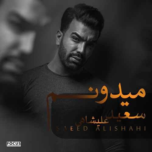 Saeed-Alishahi-Midoonam